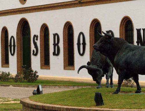 Fase 3. Ya se puede ir a los restaurantes, bares y hoteles en Andalucía