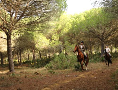 """Rutas y viajes a caballo al lado cerca de Sotogrande. """"E3"""""""