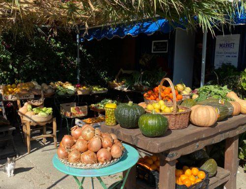 Mercadillo de fruta y verdura ecológica los domingos en San Enrique de Guadiaro