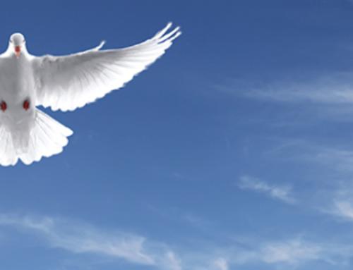 Los 12 dones del Espíritu Santo